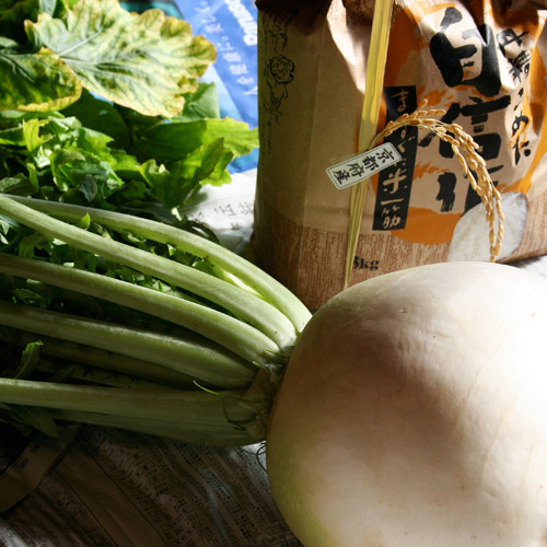 Itadakimono: Maru Daikon and Shinmai (Round Daikon Radish and New Rice) 頂き物: 丸大根と新米