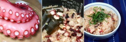 homecooking: Tako Meshi (Octopus Rice)