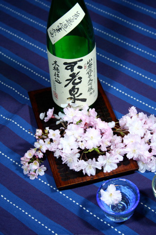 Hanami Sake: Sake and Sakura Blossoms