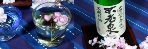 Hanamizake: Sake and Sakura Blossoms