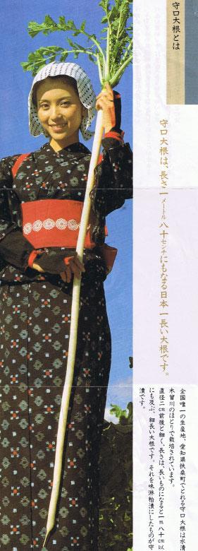 moriguchi-daikon-pamphlet