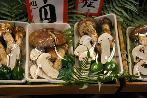 Matsutake Mushroom at Kyoto Specialty Vegetable Store Toriichi Shinise (京特産 とり市老舗 松茸)