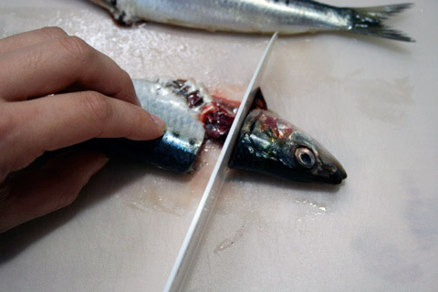 How to Clean Sardines Japanese Style