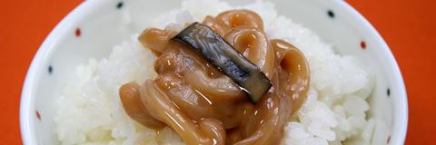 Shiokara Report: Enjoying Homemade Squid Shiokara