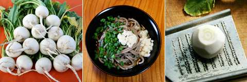 Grated Karami 'Hot' Daikon Radish and Soba 辛味大根