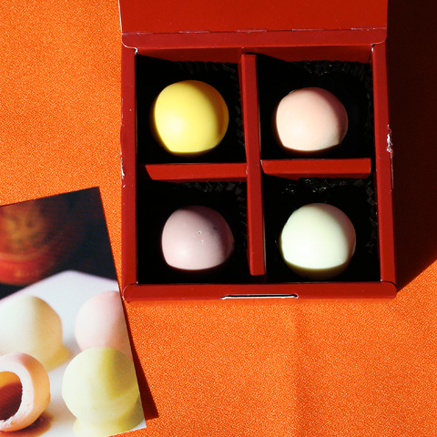 Fruit Vinegar Chocolate Valentine's Day Bonbons from Vinegar Shinise  内堀醸造 酢ボンボン