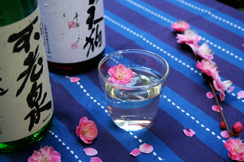 The World's Greatest Sake and 'Ume' Plum Blossoms 上原酒造 不老泉・杣の天狗