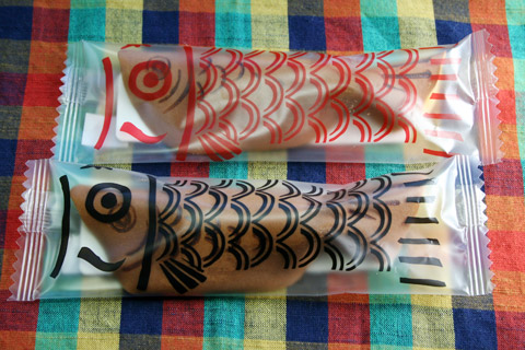 Tango-no-Sekku (Boy's Day) Koinobori Chofu 端午の節句鯉のぼり調布