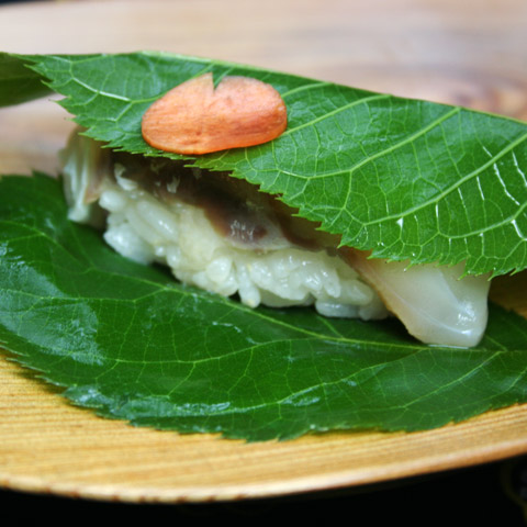 Sakurazushi: Salted Sakura Leaf Tai (Sea Bream) Sushi  鯛桜寿し