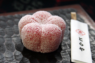 Mid-Winter Wagashi: Kyoto Toraya Red Plum Blossom with Frost Theme Namagashi Confection